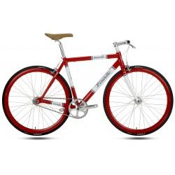 ciclo Lungavita